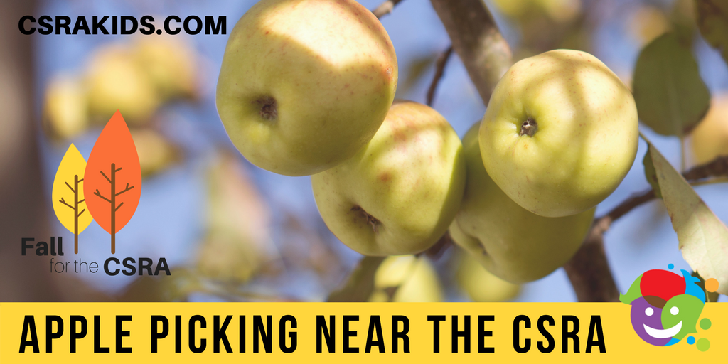 apple picking near the csra