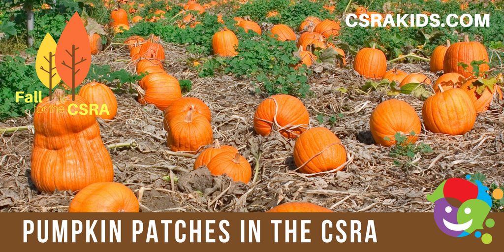pumpkin patches csra