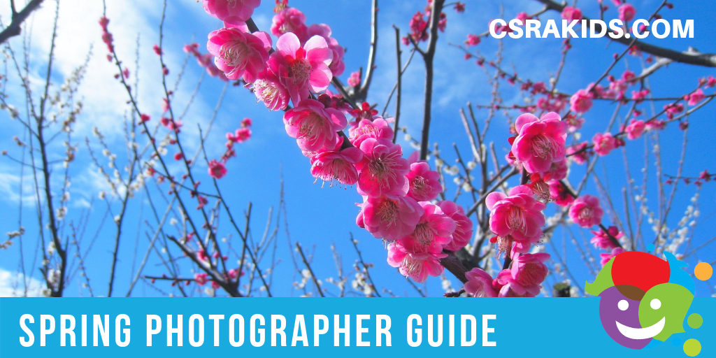 Spring Photographer Guide