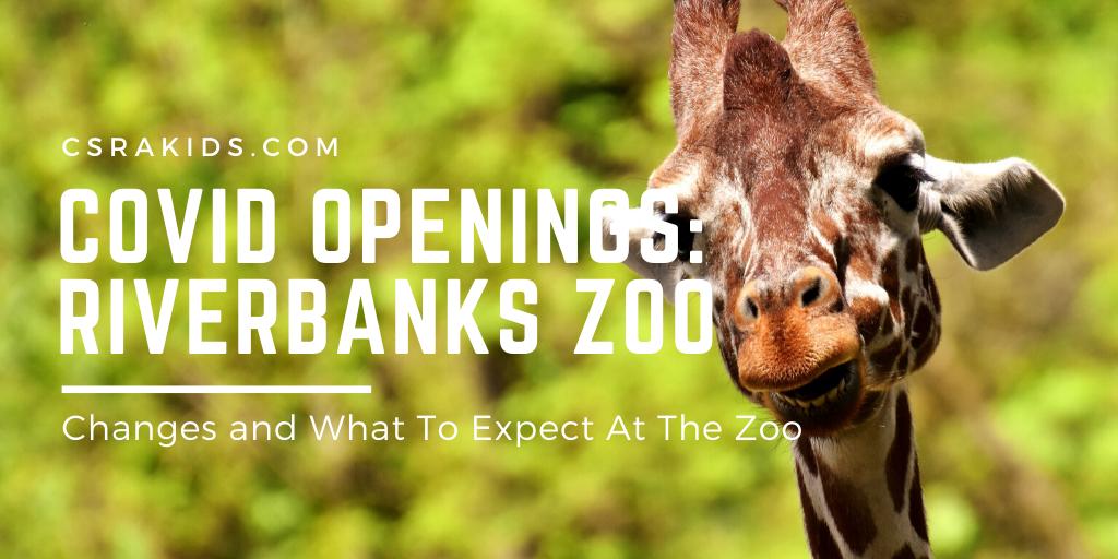 COVID Openings: Riverbanks Zoo
