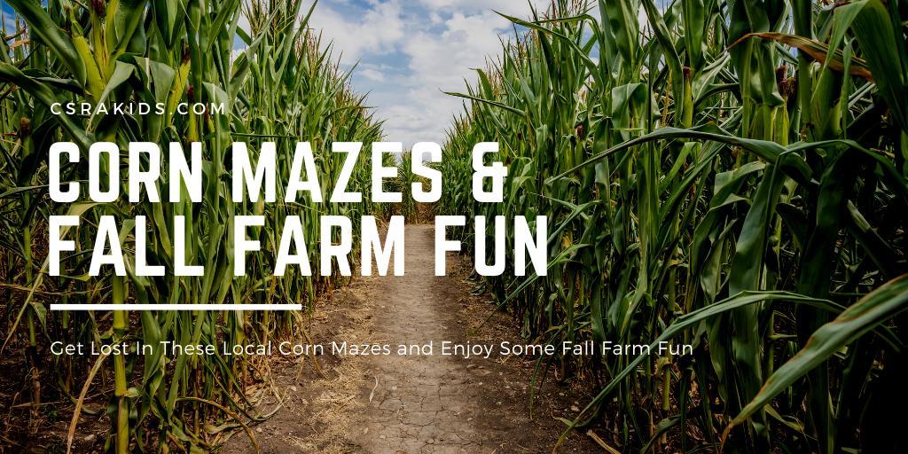 corn mazes and fall farm fun